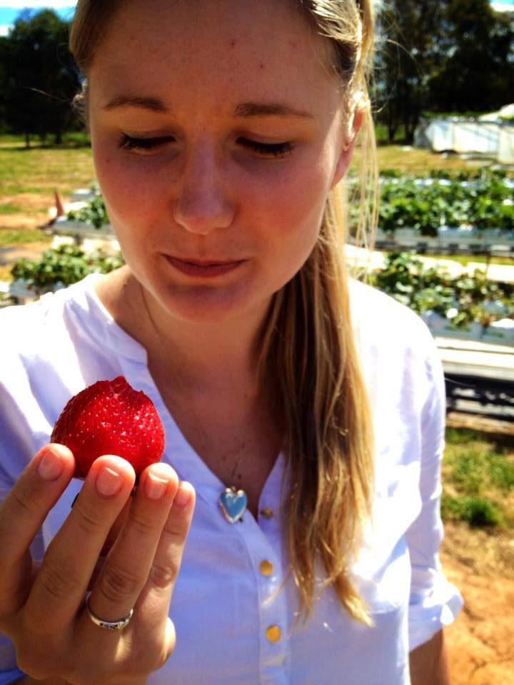 Beechworth Berries Strawberries